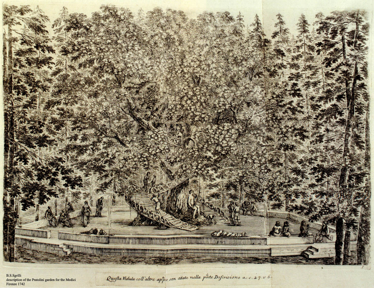 Black and white engraving, signed by Sgrilli, of large and unshaped tree with a wooden ramp from the ground up to the middle.  There is a person on the ramp.  Around it are benches with people sitting on them. This is the Pratolini Garden of the Medici in Florence, 1742.