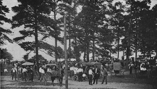 A black and white old photograph of a farmers' meeting under the trees, with their horse-and-buggies.